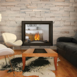 Napoleon Fireplaces: Multiview Fireplace