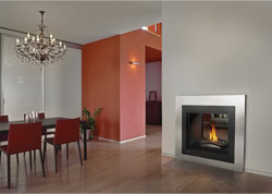 Napoleon Fireplaces: Direct Vent Gas Fireplace