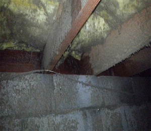 Picture of heavily-water damaged and moldy crawl space timbers, insulation, and masonry walls in a flood-damaged house in Sedona, Arizona.