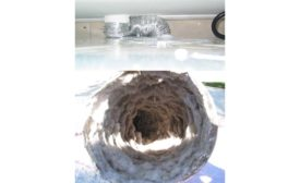 Dryer vent cleaning.