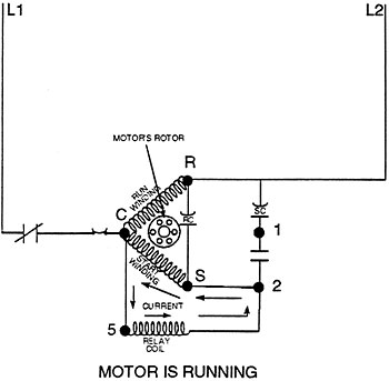 potential starting relays Single Phase Compressor Wiring Diagram